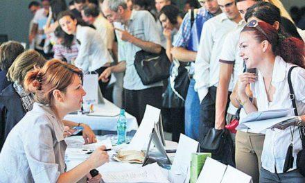 Ce domenii atrag cel mai mult tinerii din Romania care isi cauta un job
