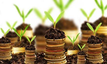 Primii patru pasi in piata investitiilor