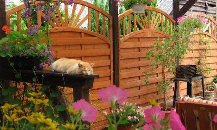 5 sfaturi pentru amenajarea unei terase rustice