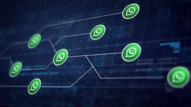 WhatsApp Marketing: afla cum poti folosi aceasta aplicatie pentru afacerea ta