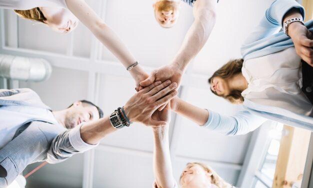 Cele 4 tipuri de cultura organizationala