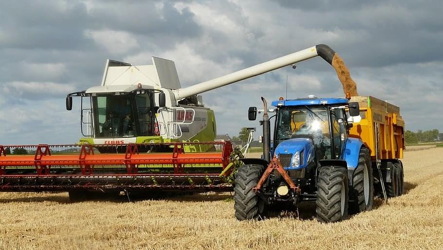 Secretele unei afaceri reusite in sectorul agro-industrial